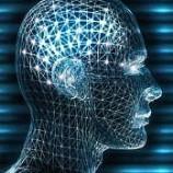 Troppe informazioni e il cervello va in Tilt